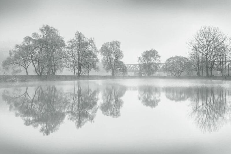 Hansei reflections